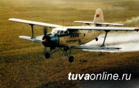 В Ергаках обнаружены обломки самолета, летевшего 68 лет назад из Кызыла в Абакан