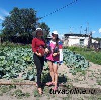 Студенты из Тувы собирают урожай не только дома, но и на Кубани