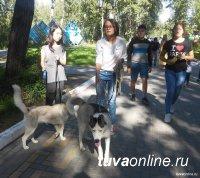 В посёлке Каа-Хем состоится девятая республиканская выставка собак охотничьих пород