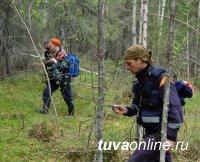 В Туве участились случаи пропажи грибников и шишкарей