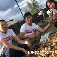 """""""Добрые сердца Тувы"""" помогли вдове фронтовика выкопать картошку"""
