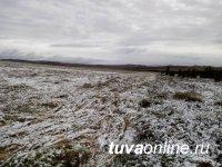 В Тандинском и Тоджинском районе выпал снег