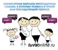 Тува вошла в число регионов, где семьи, в которых с 1 января 2020 года родится третий ребенок, будут получать пособия в размере более 11 тыс рублей