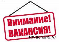 В Департамент финансов мэрии г. Кызыла требуется начальник отдела учета и отчетности