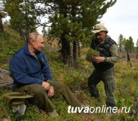 Глава региона уточнил, что на видео отдыха Путина запечатлена Тува