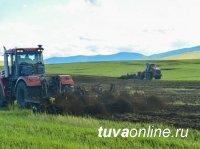 В Туве утвердили перечень сельхозугодий, не подлежащих для использования в других целях