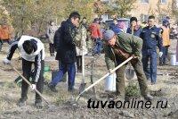 В Кызыле создают мемориал в честь героев Кобдинского сражения