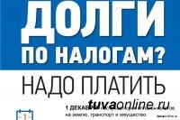 В Туве объявлена акция по уплате имущественных налогов