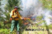 В Туве подвели итоги пожароопасного сезона