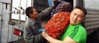 В Туве посчитали урожай, собранный в рамках губернаторского проекта «Социальный картофель»