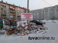 В Кызыле оштрафовали предпринимателей, развернувших несанкционированные свалки на контейнерных площадках жилых кварталов