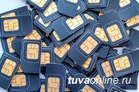 В 2019 году в СФО изъято 12 тысяч незаконно распространяемых SIM-карт