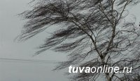 В Туве 24 марта объявлено штормовое предупреждение