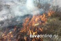 В Туве сельчанин, подпаливший степь, заплатит штраф