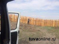 Земельный контроль в Кызыле выявил 26 случаев самозахвата федеральных земель в районе ЛДО