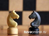 В Туве 9 мая проведут интернет-турнир по шахматам