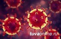 В Туве коронавирусом чаще всего заражаются в семьях