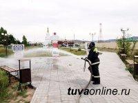 В Туве на борьбу с COVID-19 в населённых пунктах пустили почти две тонны дезинфицирующих средств