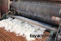В Туве запустят производство шерсти