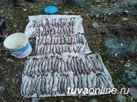 В Туве браконьер заплатит 55,5 тысяч рублей штрафа