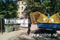 В Кызыле установили экосетки для сбора пластика