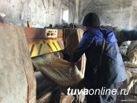 В Туве создадут шесть мини-цехов по выделке шкур