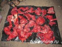 В заказнике Тувы задержали зарвавшихся браконьеров