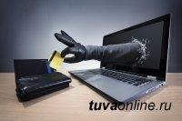 В столице Тувы IT-аферист ограбил молодую кызылчанку
