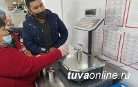 В Туве началась проверка торговых весов