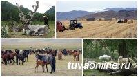 Минсельхоз Тувы объявляет о формировании кадрового резерва