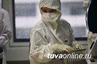 В Туве на 2 ноября выявили 94 носителя COVID-19