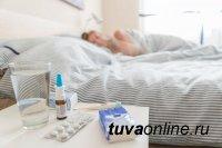 Темпы распространения в Туве гриппа и ОРВИ в сравнении с предыдущей неделей снизились на 24%