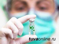 В Туве на 3 декабря новый вирус поразил 93 человека