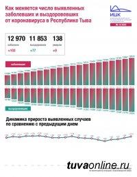 В Туве за сутки выявлено 103 новых случая Covid, в целом по России - 29039