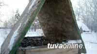 Тува: Одна кормушка может спасти за зиму до 50 птиц