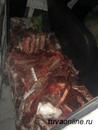 Тува: В Кызылском районе выявлен факт незаконной перевозки туши диких животных