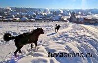 В Туве 17 января ночью до 39°С мороза, переменная облачность, туман, гололедица