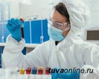 В Туве к 19 января скончались ещё 8 больных COVID-19