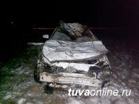 В Туве водитель легковушки погиб, столкнувшись с лошадьми