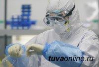В Туве к 22 января инфицированных выявили лишь в 3 муниципалитетах