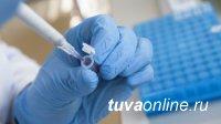 В Туве к 25 января выявили 6 инфицированных COVID-19 и только в Кызыле, остальные муниципалитеты - чисты