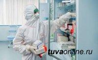 В Туве к 25 января выявили ещё 10 больных COVID-19