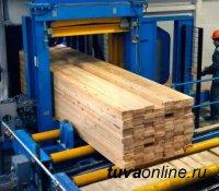 В Туве приступили к созданию лесоперерабатывающего комплекса безотходного цикла