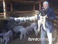 В Туве спикер парламента обсуждает злободневные для молодых животноводов проблемы на местах