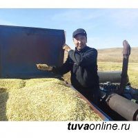 "10 тонн ""тыва далган"" поедет в Казахстан"