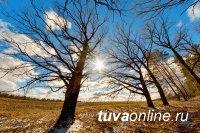 В Туве 7 апреля, где температура поднимется до 19°С тепла, высокая пожароопасность