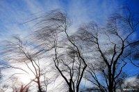 В Туве прогнозируют усиление ветра до 17-22 м/сек
