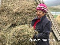 Жители горного села Моген-Бурен Республики Тыва народным методом построили мост вместо снесенного паводком