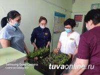 Медсестры Тувы подарили 250 цветочных рассад Детскому дому в свой профессиональный прзадник