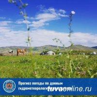 В Туве 18 мая температура воздуха может повыситься до 25 градусов тепла